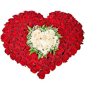 Мои мечты (151 роза)