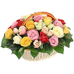 самое разные розы