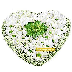 Сердце нашей любви