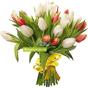 La manie des tulipes
