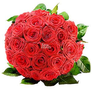 Бархат (25 роз)