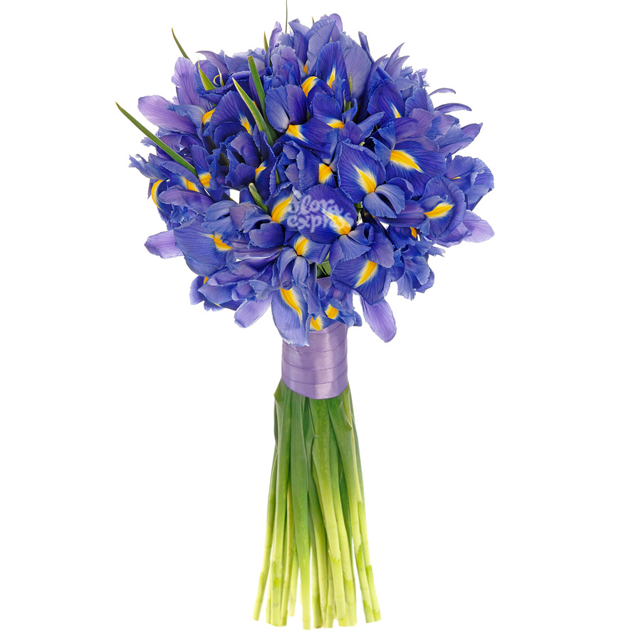 Цветы флора купить