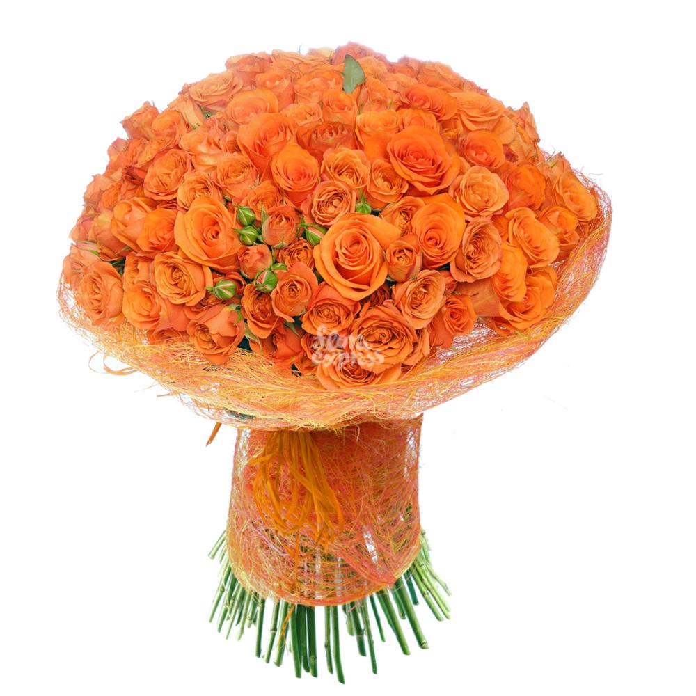 Всполохи от Floraexpress