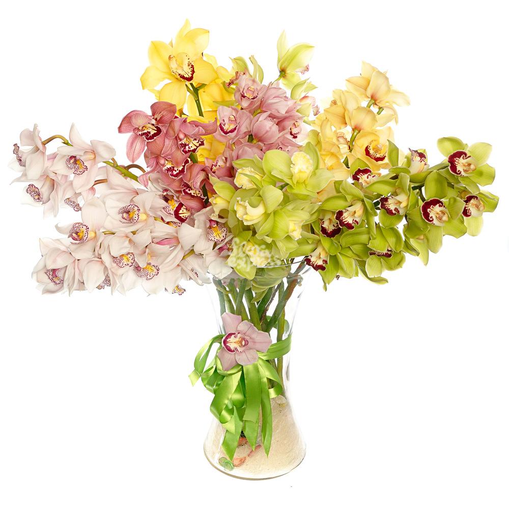 Орхидеи от Floraexpress