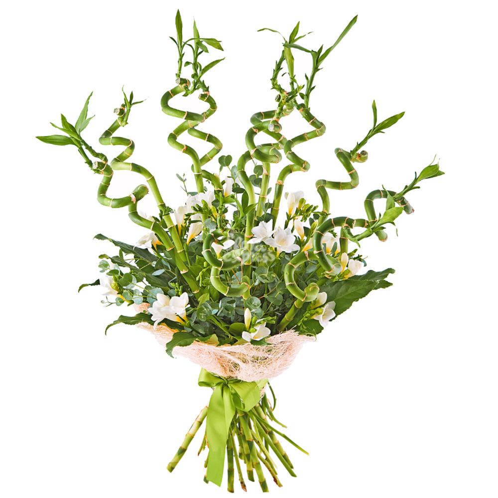 Принцесса Турандот от Floraexpress