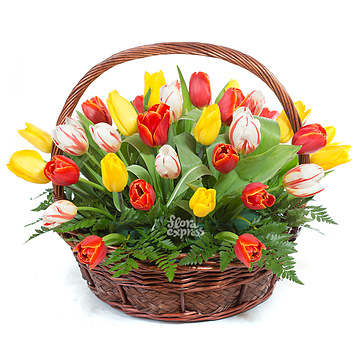 Букет Корзина «Впусти весну»