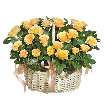 Букет Корзина «Wonderful life»