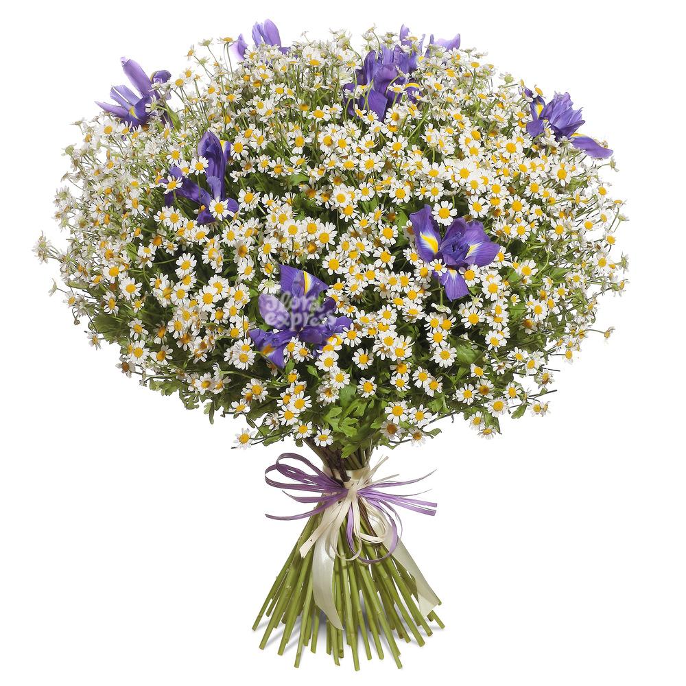 Ветерок от Floraexpress