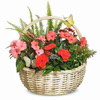 Букет Корзина «Цветочный подарок»