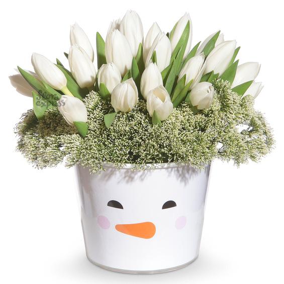 Снежные тюльпаны