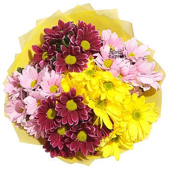 Букет Разноцветные хризантемы