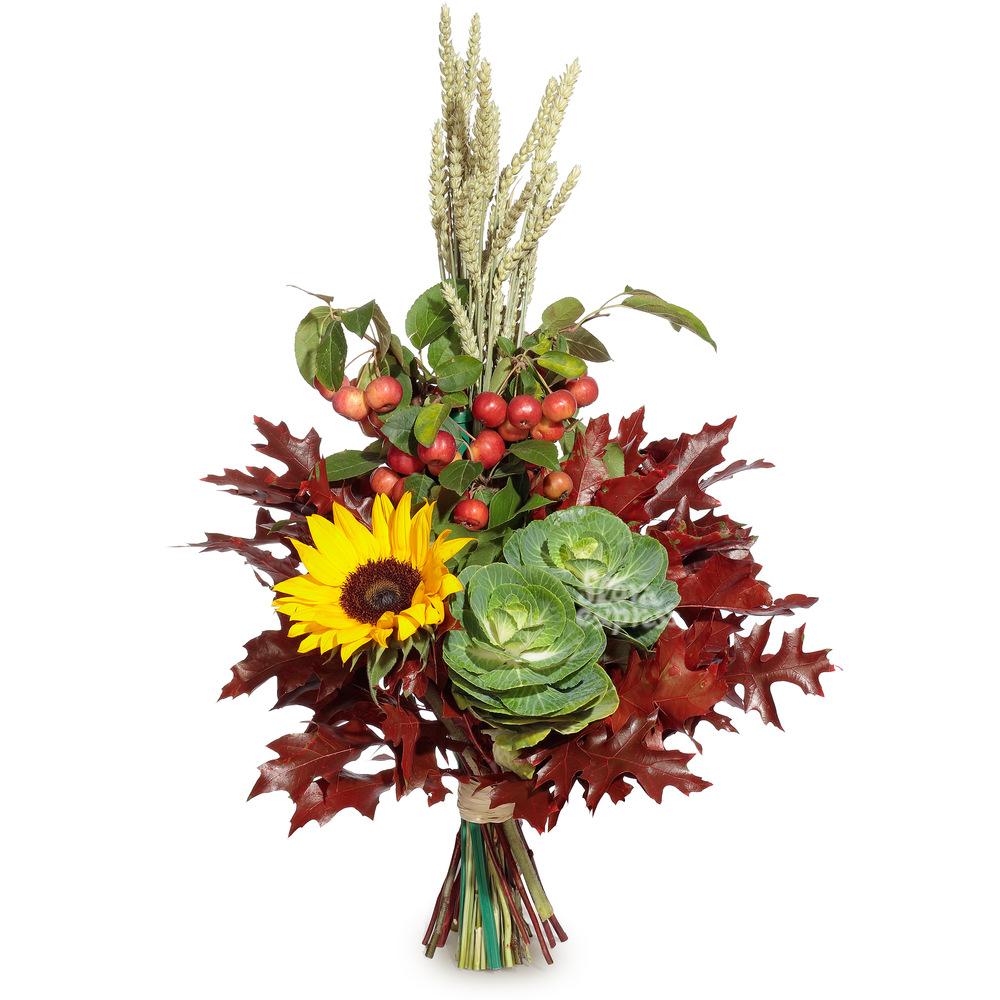 «Flora Express» Солнечный зайчик