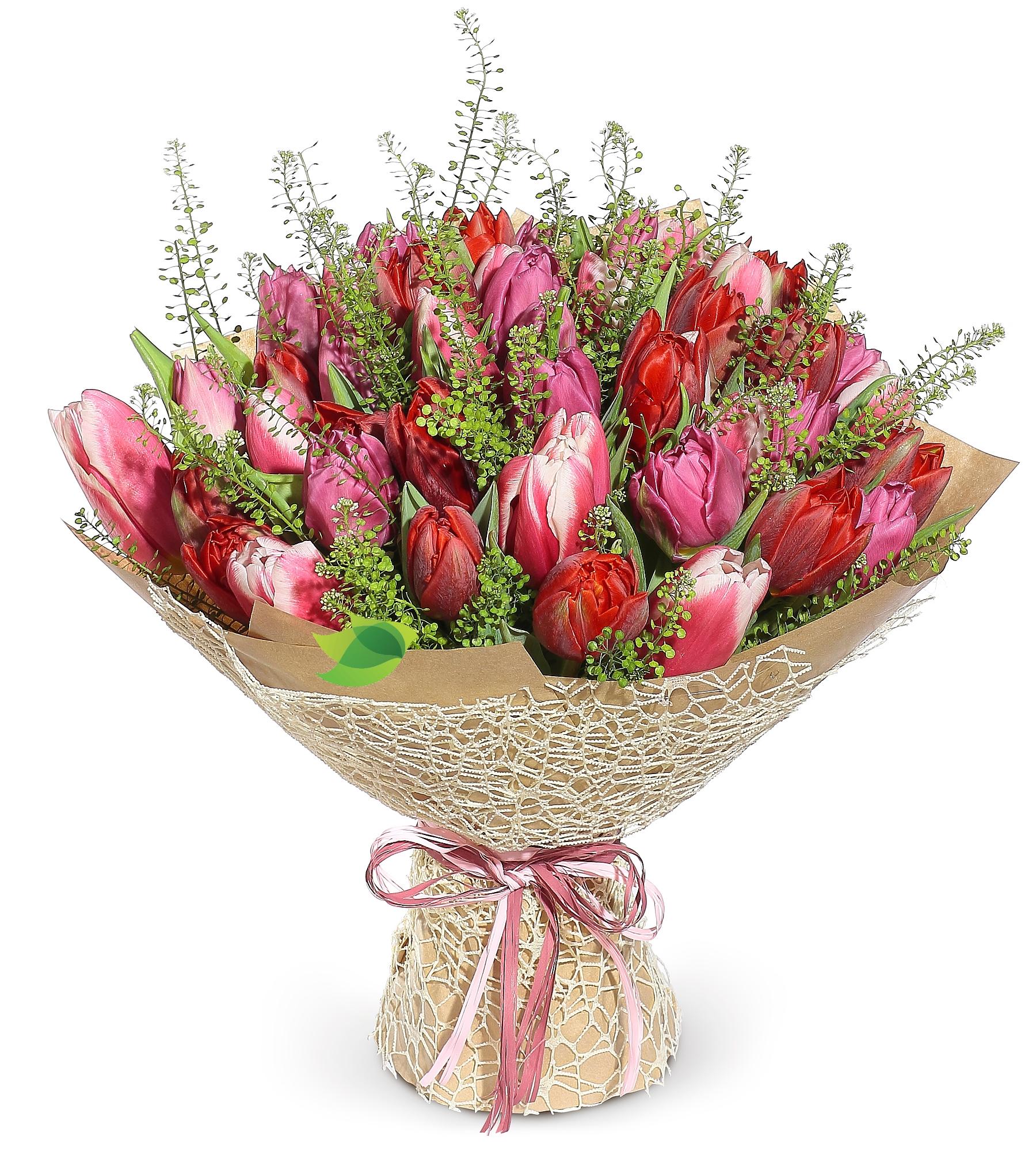 Фото букета: Большой букет тюльпанов