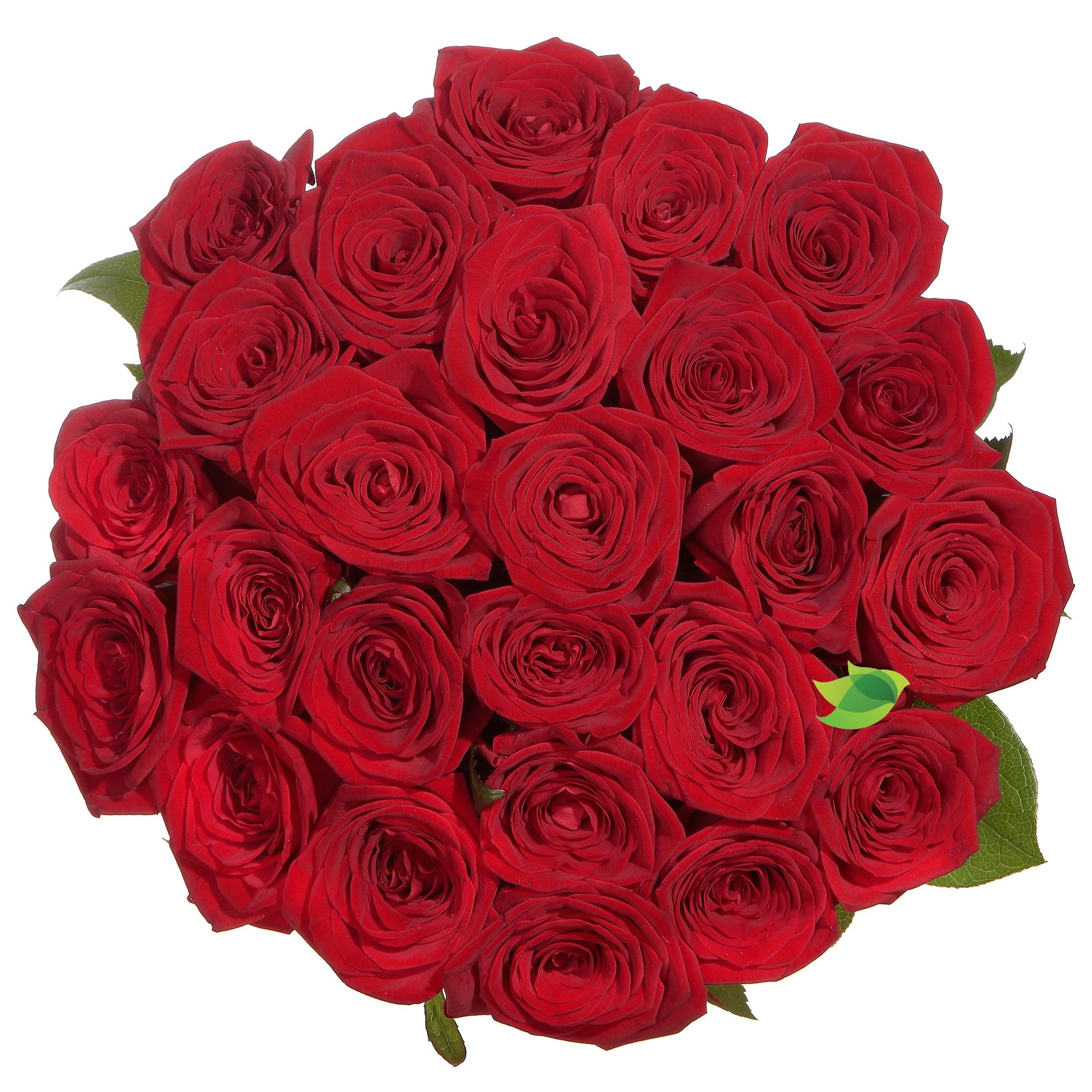 Фото букета: Букет бордовых роз