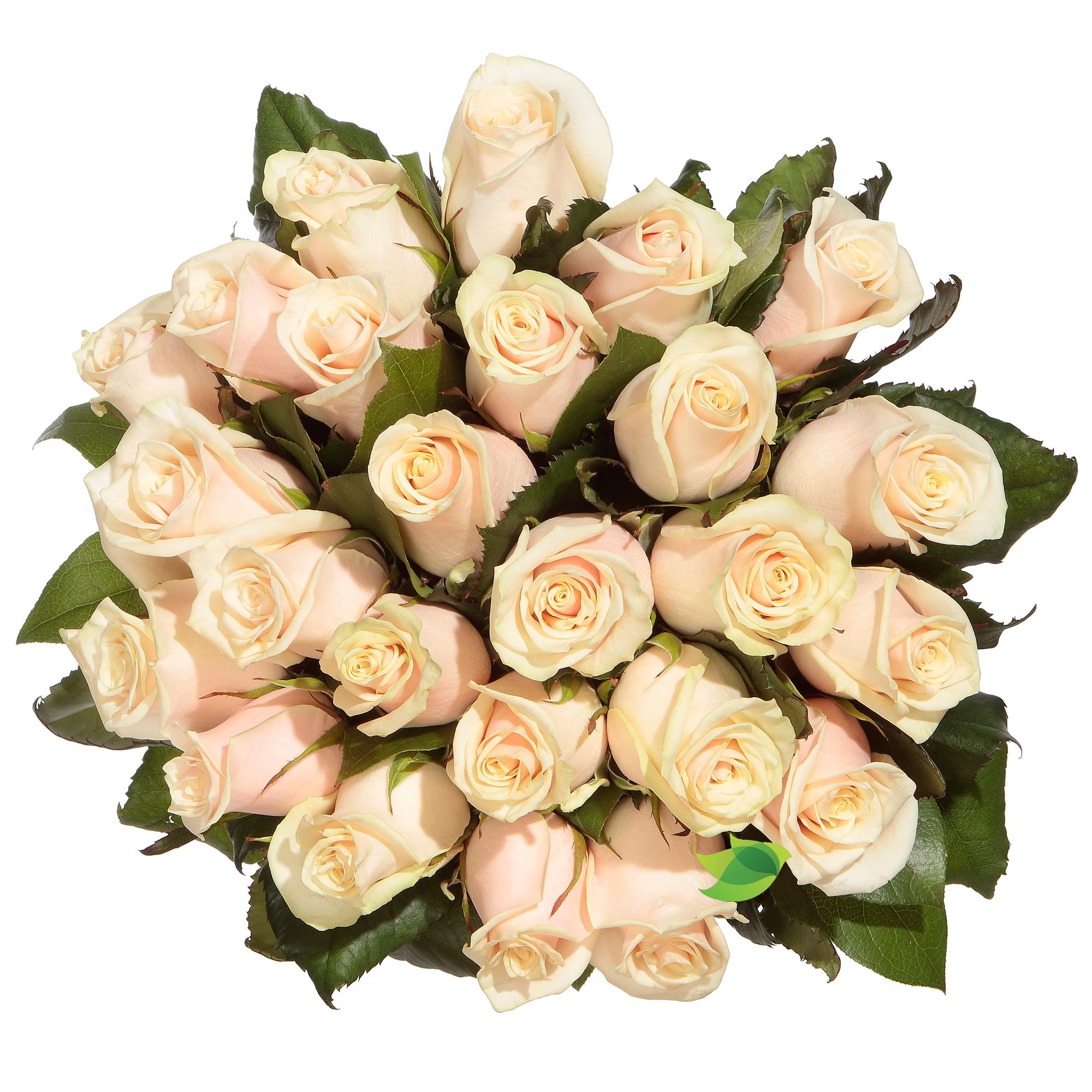 Фото букета: Букет кремовых роз