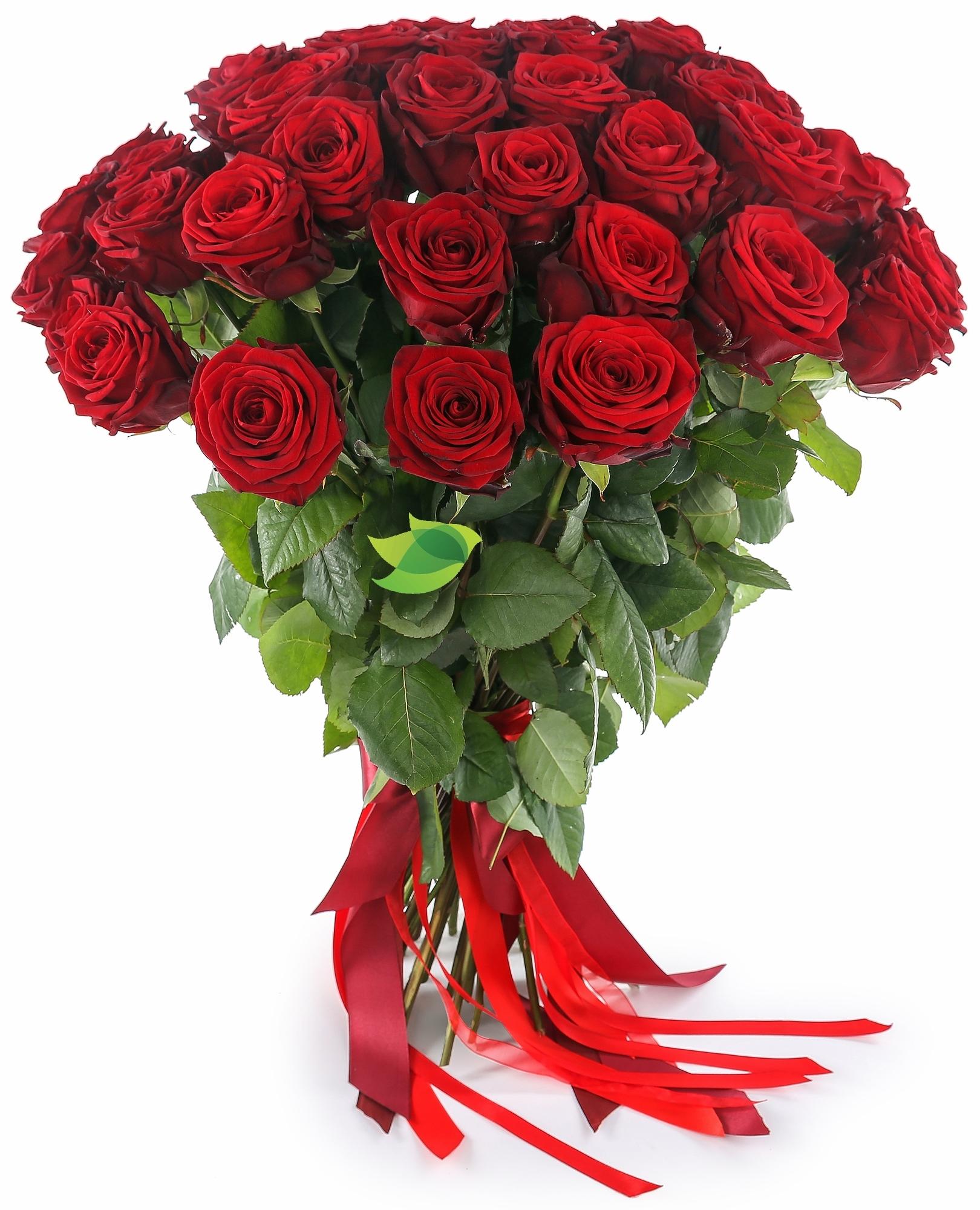 Фото букета: Высокие красные розы