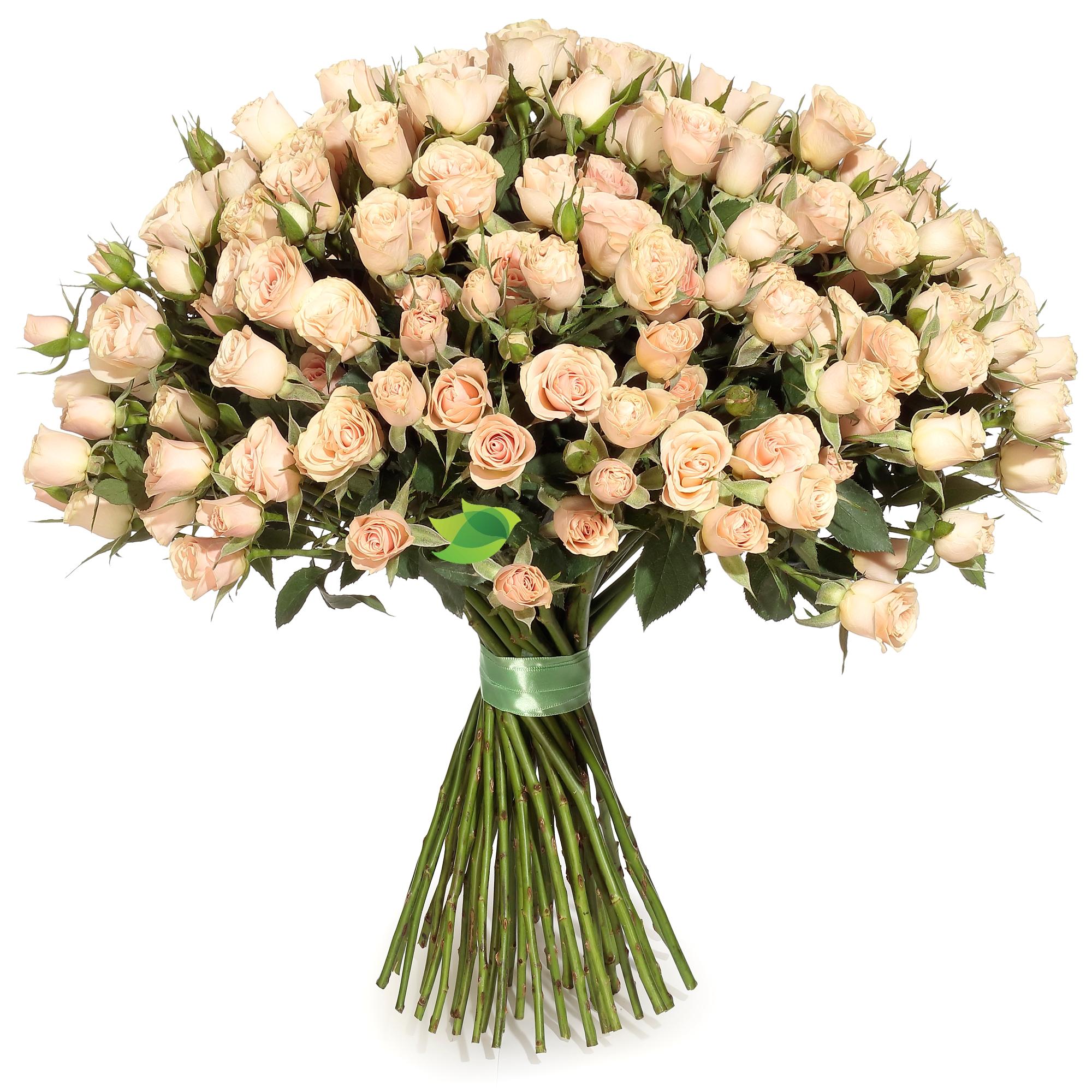Фото букета: Кустовые кремовые розы